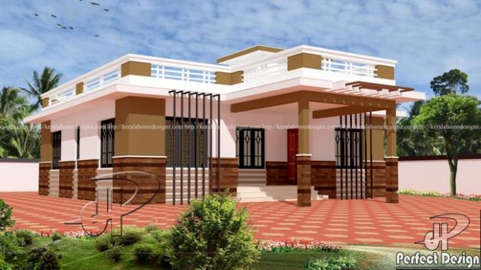 Modern Single Storey House Plan With Large Open Terrace House And Decors